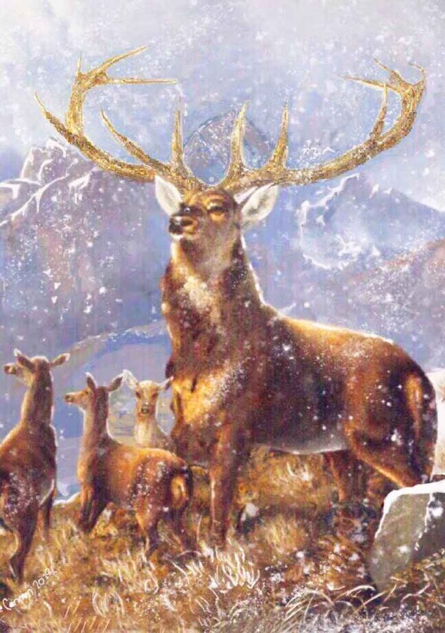 'Startled Deer in a Landscape' Xmas Card 2018
