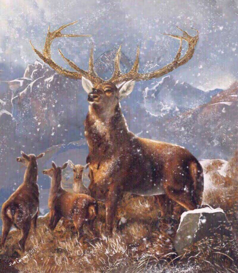 Startled Deer In A Landscape, one of our 2019 Christmas cards