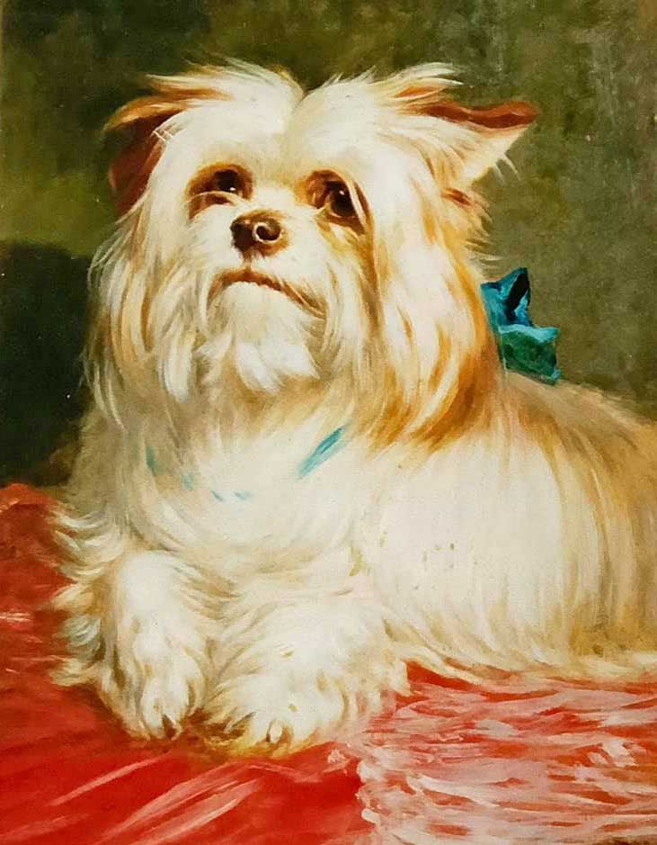 A Yorkshire Terrier by Thomas William Earl (1815-1890) - an oil on board painting